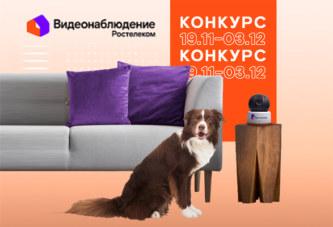 В главных ролях — ваши домашние любимцы: конкурс от «Ростелекома»